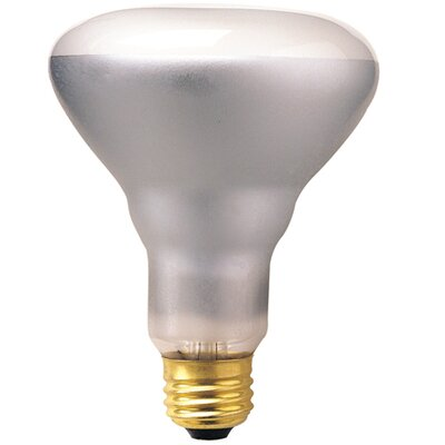 Bulbrite Industries 65W 120-Volt (2700K) Incandescent Light Bulb