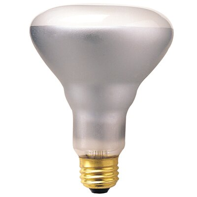 Bulbrite Industries Dimmable 130-Volt (2700K) Incandescent Light Bulb