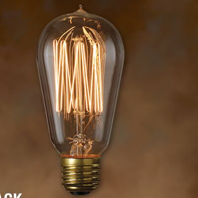 Bulbrite Industries Nostalgic Edison Warm Glow (2100K) Incandescent Light Bulb (Pack of 6)