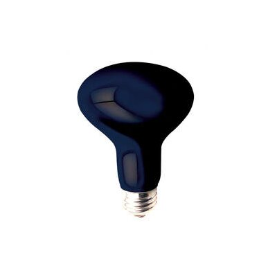 Bulbrite Industries 75W R25 Reflector Bulb in Black