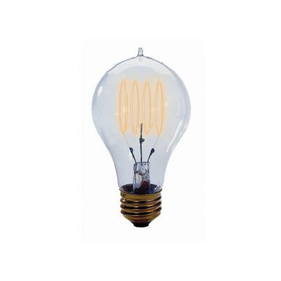 Bulbrite Industries 40W 120-Volt Incandescent Light  Bulb