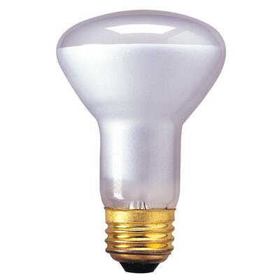Bulbrite Industries R20 Incandescent Indoor Reflector Bulb for Flood