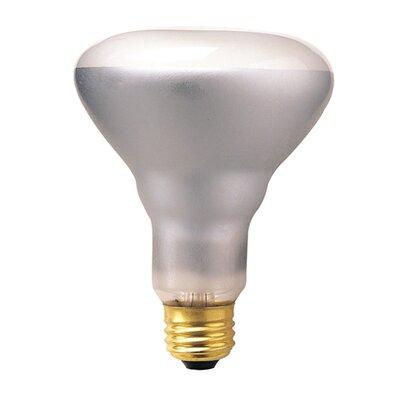 50w incandescent br30 indoor reflector flood light bulb in clear. Black Bedroom Furniture Sets. Home Design Ideas