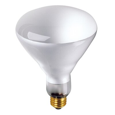 Bulbrite Industries 65W Incandescent BR40 Indoor Reflector Flood Light Bulb with E26 Base in Clear