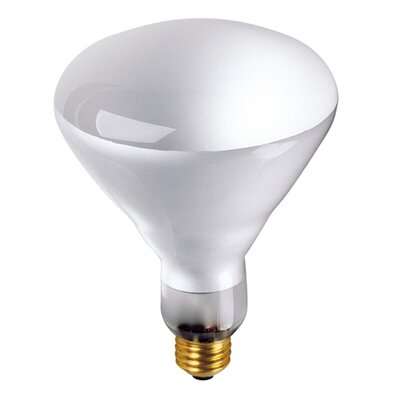 Bulbrite Industries 65W Incandescent BR40 Indoor Reflector Flood Light Bulb in Clear