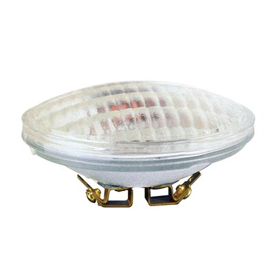Bulbrite Industries 36W PAR36 Screw Terminal Base Halogen/Xenon Sealed Beam Bulb for Narrow Spot