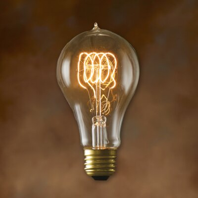 Bulbrite Industries A23 Incandescent Nostalgic Edison Bulb
