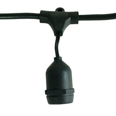 Bulbrite Industries 15 Light Socket Outdoor String Light & Reviews Wayfair Supply