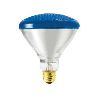 Bulbrite Industries 100W Blue Incandescent Light Bulb