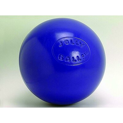 Push-N-Play Ball Dog Toy