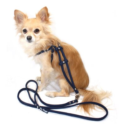 Suede Step-in Dog Harness in Navy