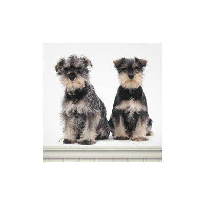 4 Walls Puppy Love Miniature Schnauzers Wall Decal