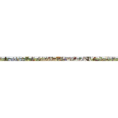 4 Walls Panoramic Party Time Animals Mural Style Border in Multi