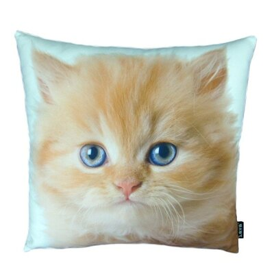 lava Persian Cat Pillow