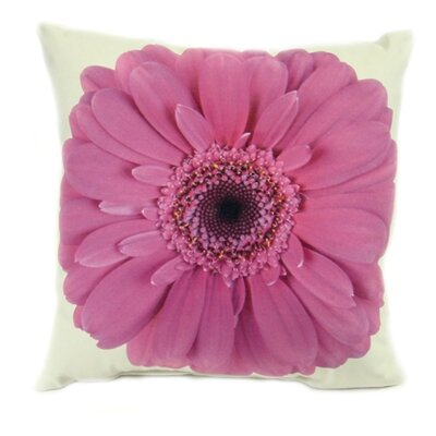 lava Gerbera Pillow