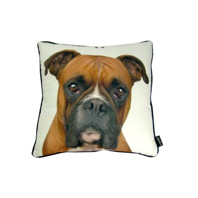 lava Boxer Pillow