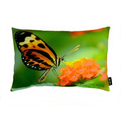 lava Butterfly on Blossom Polyester Pillow