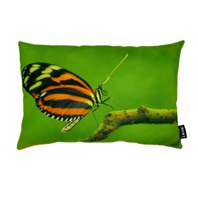 lava Butterfly on Twig Polyester Pillow