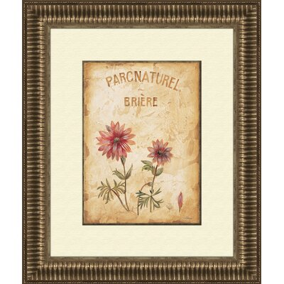 Pro Tour Memorabilia Parcnaturel A Framed Art