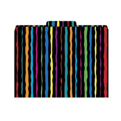 Barker Creek & Lasting Lessons Neon Stripes Functional File Folder
