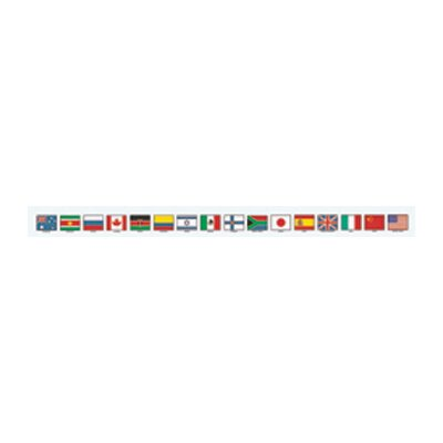McDonald Publishing Chalkboard Topper Flags Of Nations