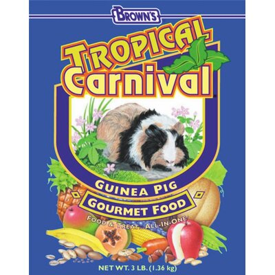 F.M. Browns Wildbird Tropical Carnival Guinea Pig Food