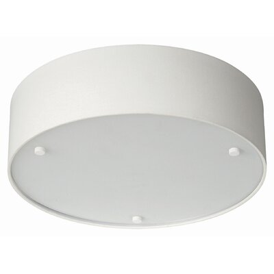 Philips Forecast Lighting Basal 2 Light Ceiling Lamp
