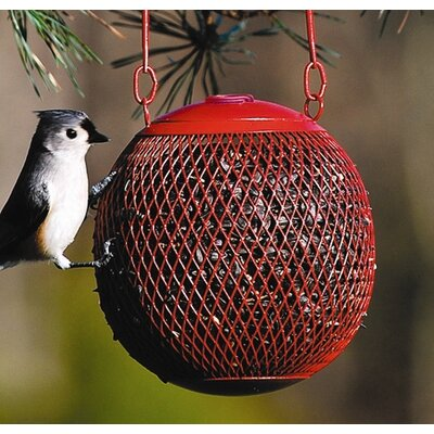 No/No Seed Ball Wild Bird Feeder