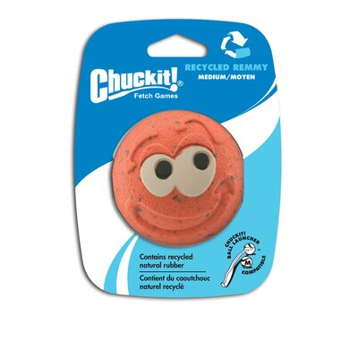 Chuck-It Medium Recycled Remmy Dog Toy