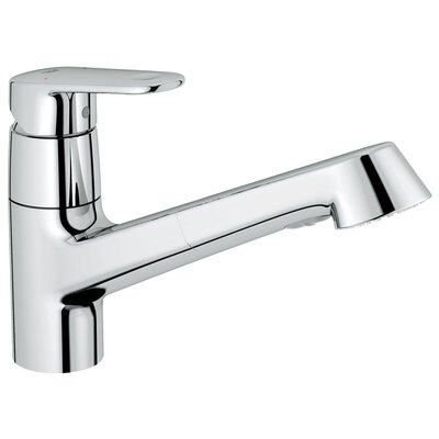 Europlus Pull-Out Single Handle Single Hole Kitchen Faucet with Watercare