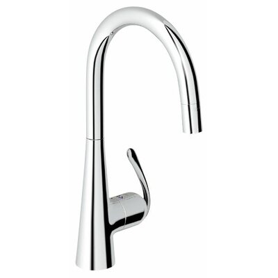 Grohe Eurodisc Single Handle Single Hole Kitchen Faucet
