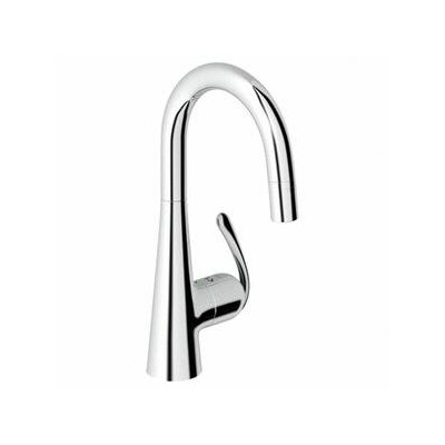 Ladylux3 Single Handle Single Hole Bar Faucet with Dual Spray Pull Down