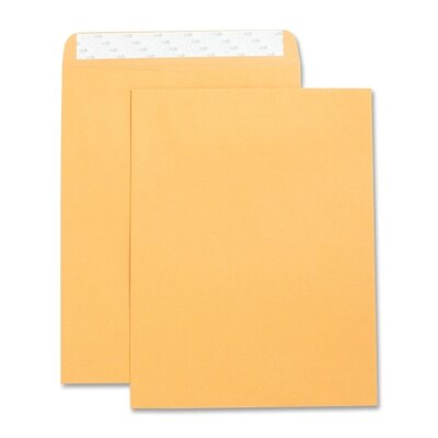 "Business Source Catalog Envelopes, Self Seal, Plain, 10""x13"", 250 per Box, Kraft"