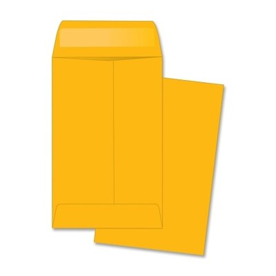Business Source Coin Envelope (500 Per Box)