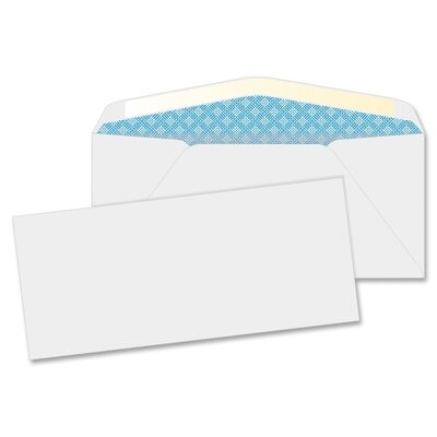 Business Source Security Business Envelope (40 Per Box)