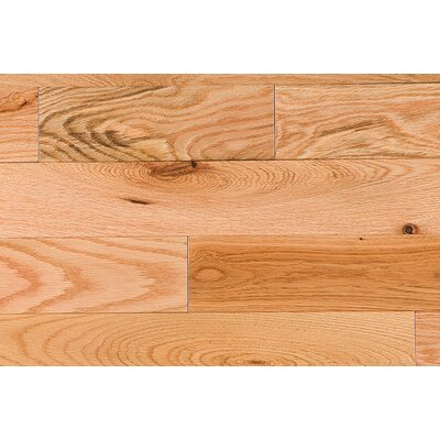 "Jasper Semi-Gloss 3-1/4"" Solid Red Oak in Rustic"