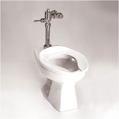 Toto Commercial Flushometer Bedpan 1.6 GPF Elongated 1 Piece Toilet