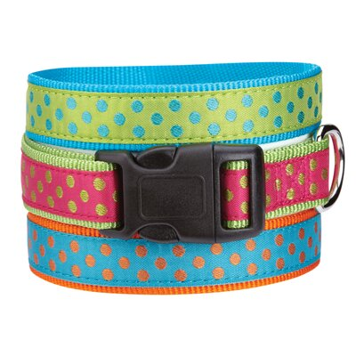 East Side Collection Polka Dot Dog Collar