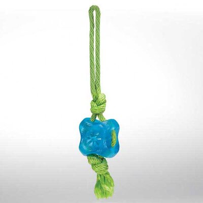 Fundamentals Treat Tug Dog Toy