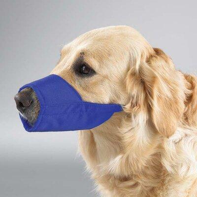 Lined Fashion Dog Muzzle