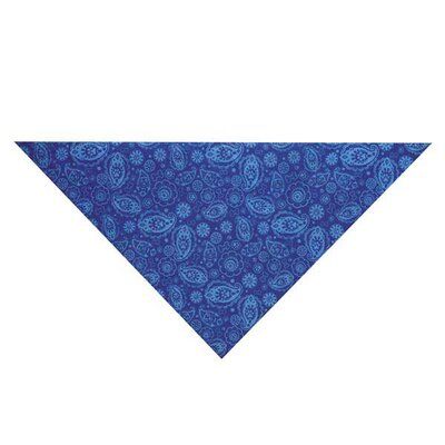 Guardian Gear Insect Shield Paisley Pet Bandana
