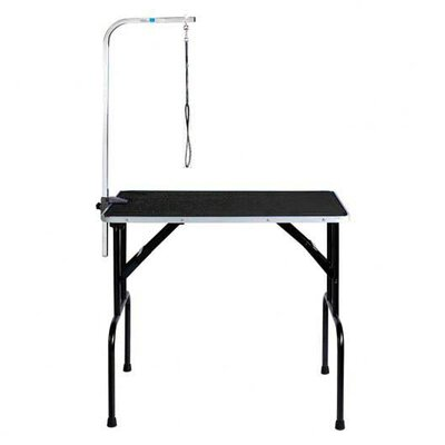 Master Equipment Dog Grooming Table with Arm