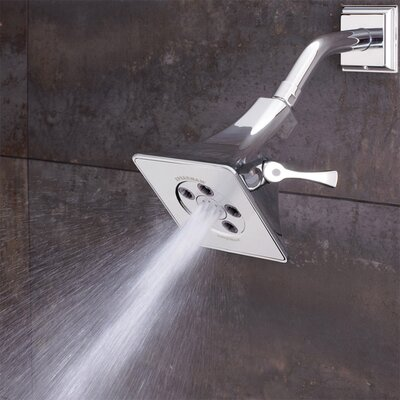 Speakman Rainier Showerhead