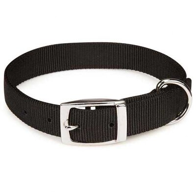 Zack and Zoey Double Layer Dog Collar