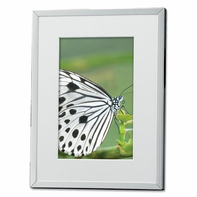Lawrence Frames Metal Picture Frame