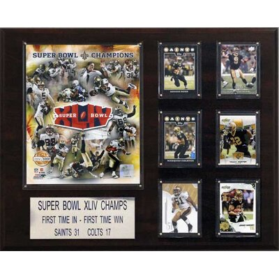 "C & I Collectibles NFL 16"" x 20"" Champions Plaque"