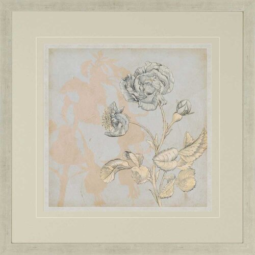 Shadow Floral IV by Meagher Framed Graphic Art