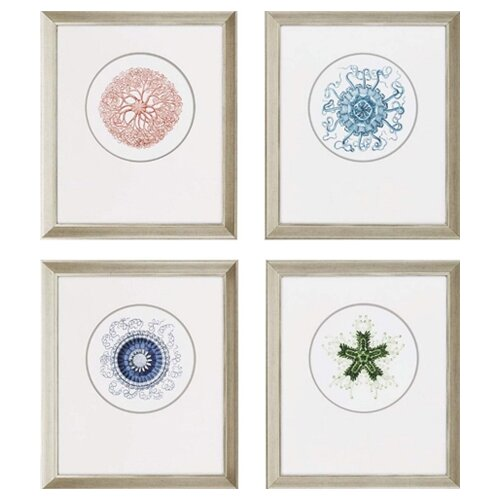 Ocean Gems Waterfront Framed 4 Piece Graphic Art
