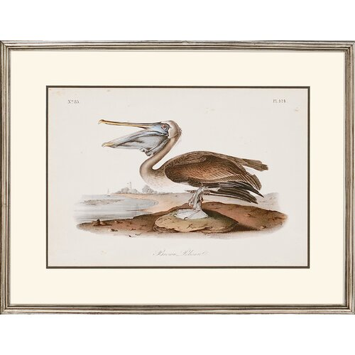 Paragon Audubon Egrets by Audubon 2 Piece Framed Painting Print Set