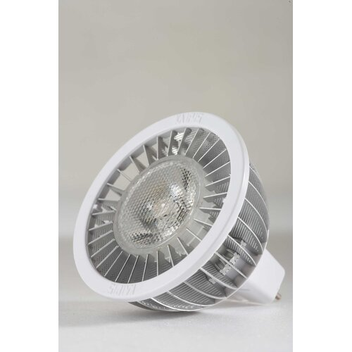 Royal Pacific 6W LED MR16 with Transformer